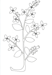 Blue-flowers02012019_0000